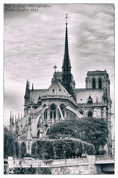 La Catedral de Notre Dame de París,